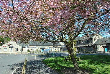 At St. Ronan's we're proud of our warm, welcoming and inclusive ethos and we believe this is the environment where children will learn best. Photograph is of St Ronan's Primary school behind tree covered in pink blossom